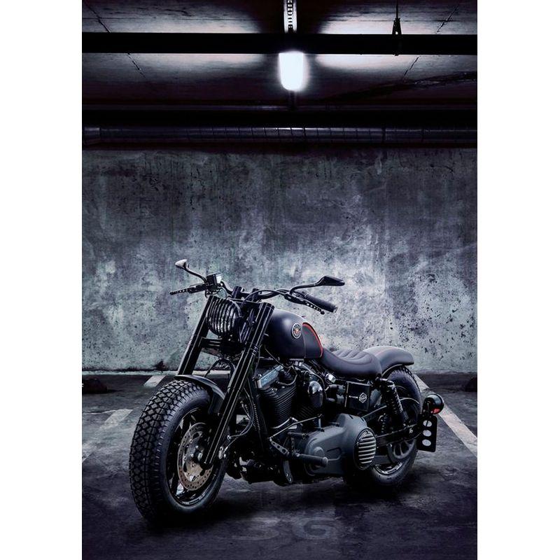 Quadro Decorativo Moto Modelo 104 30x20 Mdf Madeira Adesivada